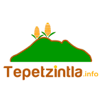 Logo Tepetzintla.info